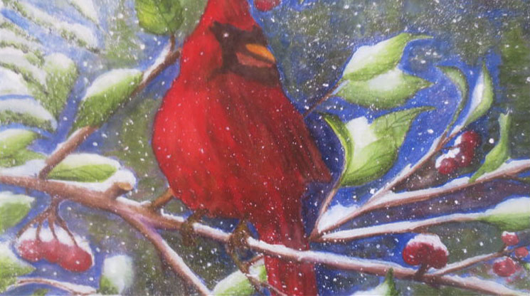 """Cardinal in the snow"" by Ginny Palumbos"