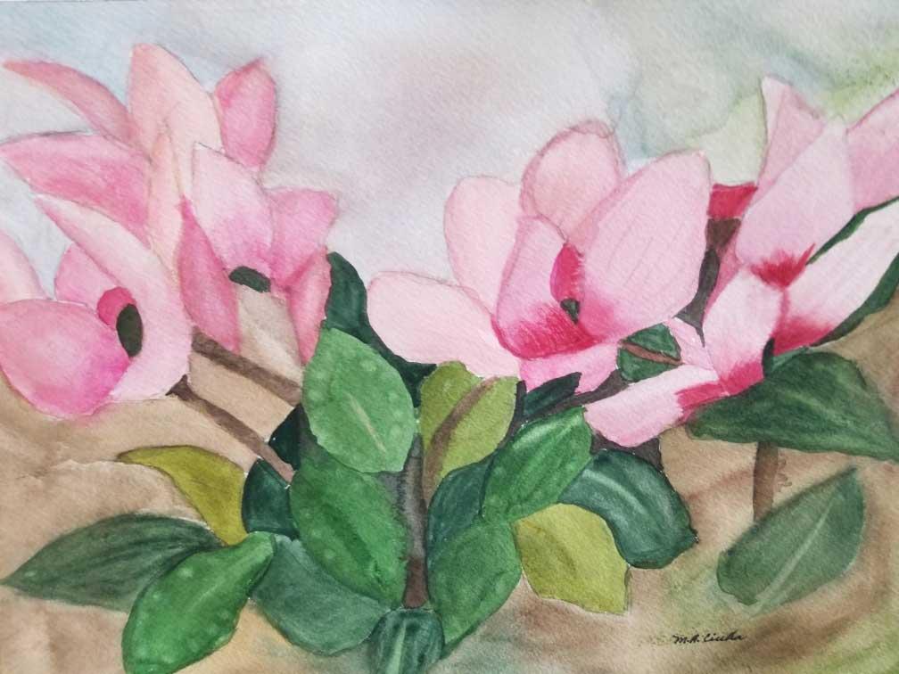 """""""Cyclamen"""" by Mary Ann Ciulla"""