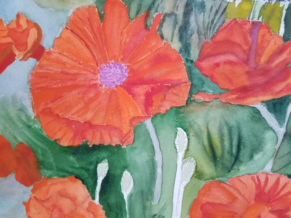 """""""Brave Poppies"""" by Mary Ann Ciulla"""