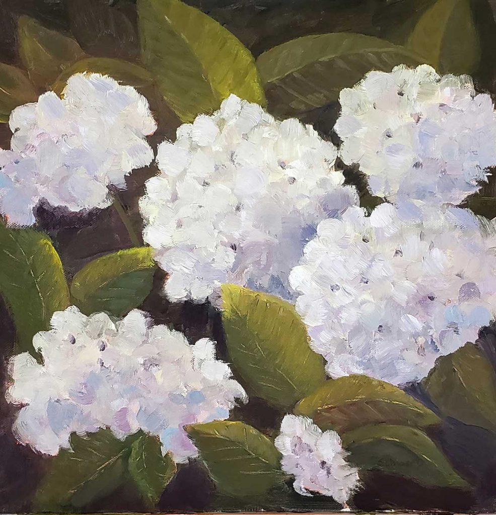 """""""Lizzy's Hydrangeas"""" by Patricia Schwert"""